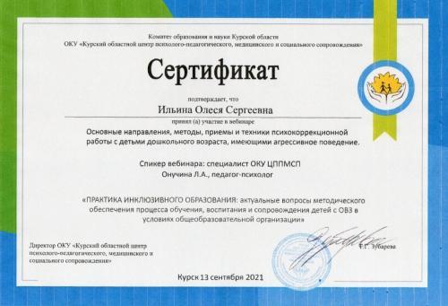 Ильина сертификат 14.09.2021