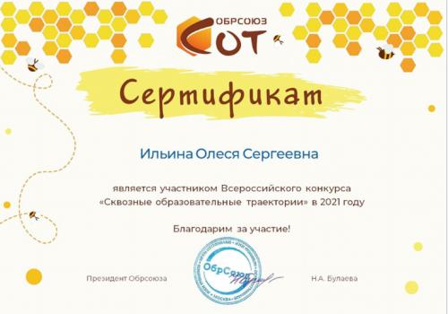 СОТы Ильина 2021